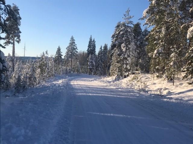 North Rally i Boden rivstartar Rally-SM 2022